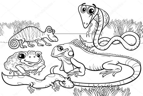 free coloring pages of reptiles and hibians