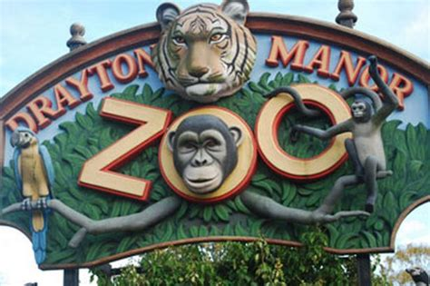 theme park zoo adopt an animal at drayton manor zoo birmingham mail