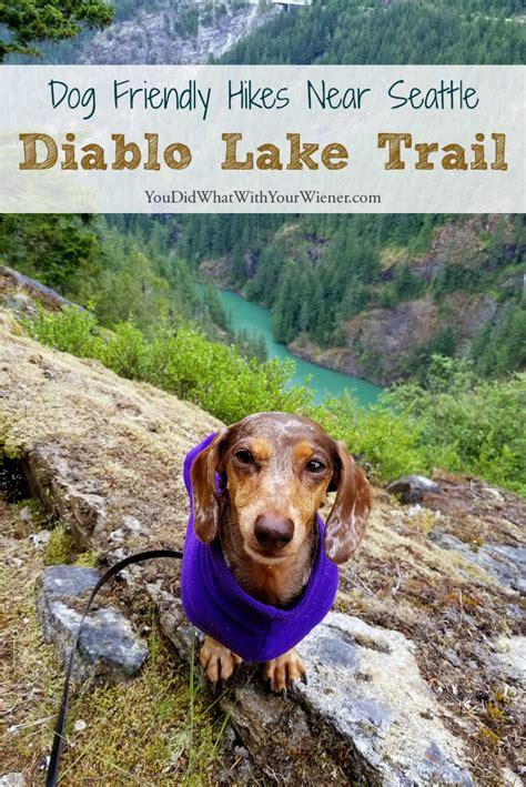 friendly hikes near me friendly hike near seattle diablo lake trail