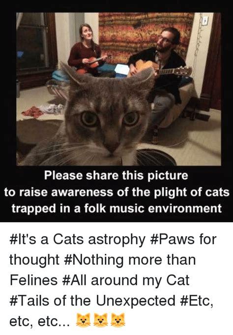 Cat Trap Meme - its a trap cat meme www pixshark com images galleries
