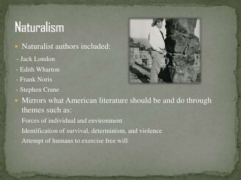 themes of realism literature american literature now