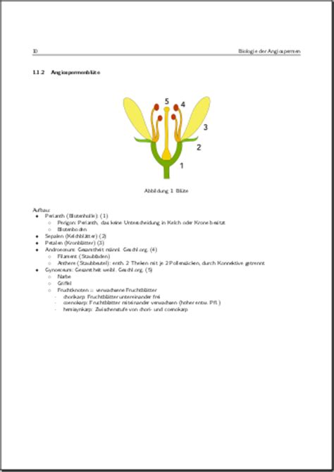 phd thesis template texmaker