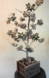 How Much To Give For A Wedding Gift Cash when money grows on trees table for fifty