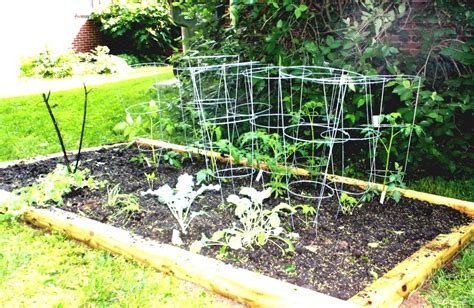 Small Vegetable Garden Ideas Small Vegetable Garden Design For Small House Guide Mybktouch