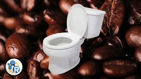 why does coffee make you go to the bathroom why does coffee make you go