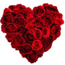 valentine flower pictures download