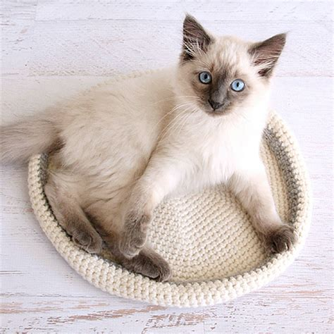 cat bed pattern 16 diy dog bed projects diy cat houses that are the cat