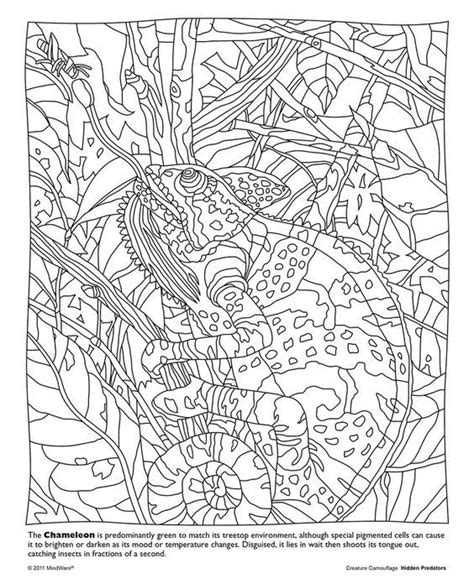 camouflaged animals coloring info pages allaboutnature com camouflage coloring pages coloring home