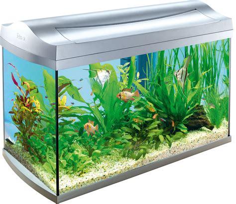 the art of discovery stylecraft l tetra aqua art discovery line aquarium 60l kopen