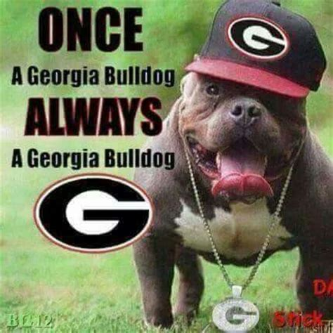 Georgia Bulldog Memes - 501 best ga bulldogs i love my dawgs images on pinterest chs collage football and falcons