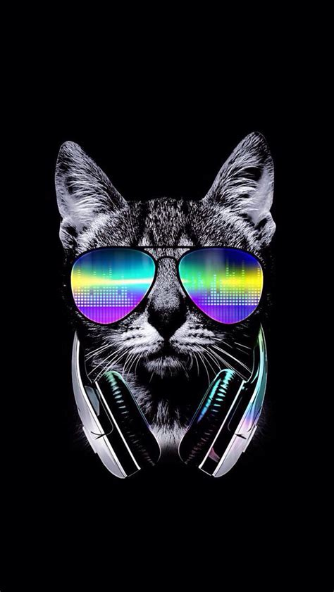 iphone wallpaper cat glasses wallpaper iphone wallpaper mobile phone pinterest