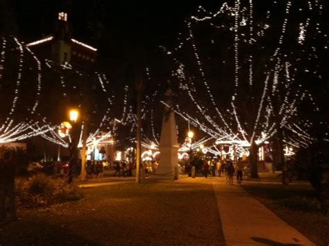 jacksonville fl things to do christmas lights 904living