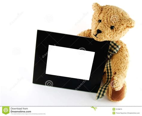 Frame Foto Teddy teddy with frame royalty free stock photo image 3129875