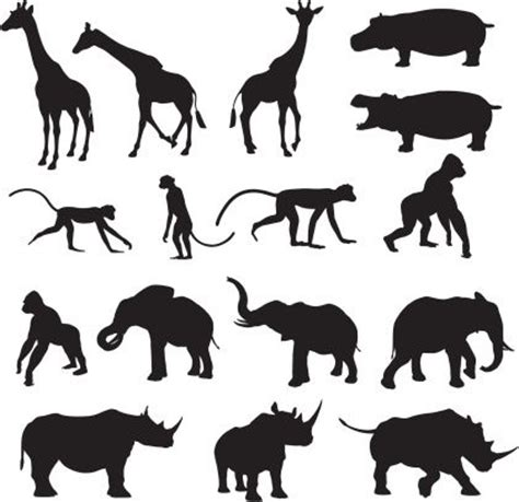 printable jungle animal silhouettes african animal silhouette collection clipart f 252 r abs for