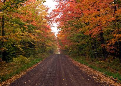 of minnesota colors minnesota fall colors fall tours brainerd minnesota