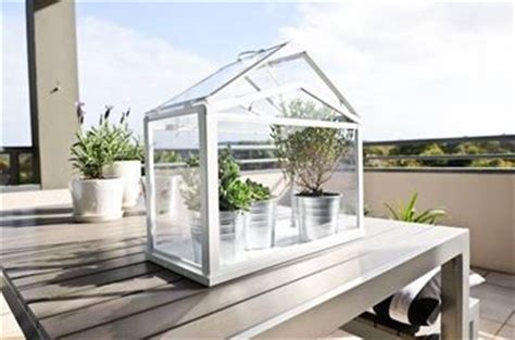serra da appartamento serra da balcone piante da terrazzo
