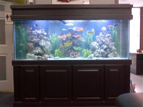 Meja Galon Aquarium Size 150 Gallons Aquarium Stand Black Maple Wood