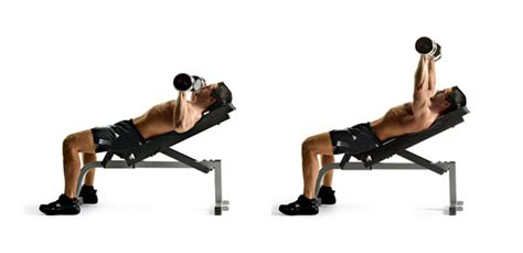 chest workout with bench gym inspiration com dumbbell incline chest press
