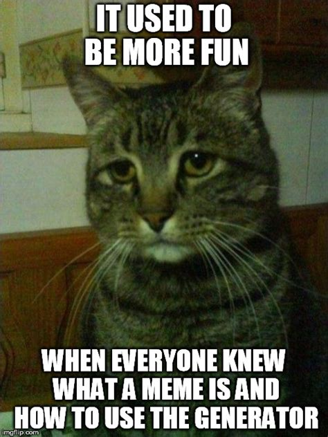 Meme Generator Kitten - depressed cat meme imgflip
