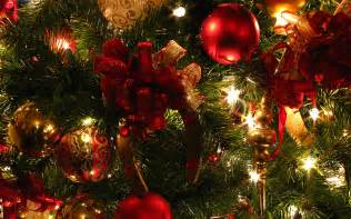 disneyland vacations disneyland fantasy christmas
