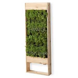 Vertical Garden Planting Panel How Do You Plan A Vertical Garden And Prepare The Soil