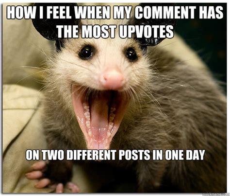 Possum Memes - over excited possum memes quickmeme