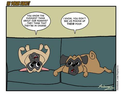 comic pug pug breeds picture