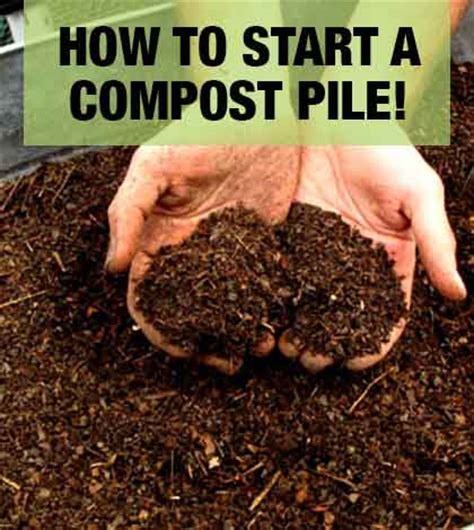 how to start a compost pile for your organic garden