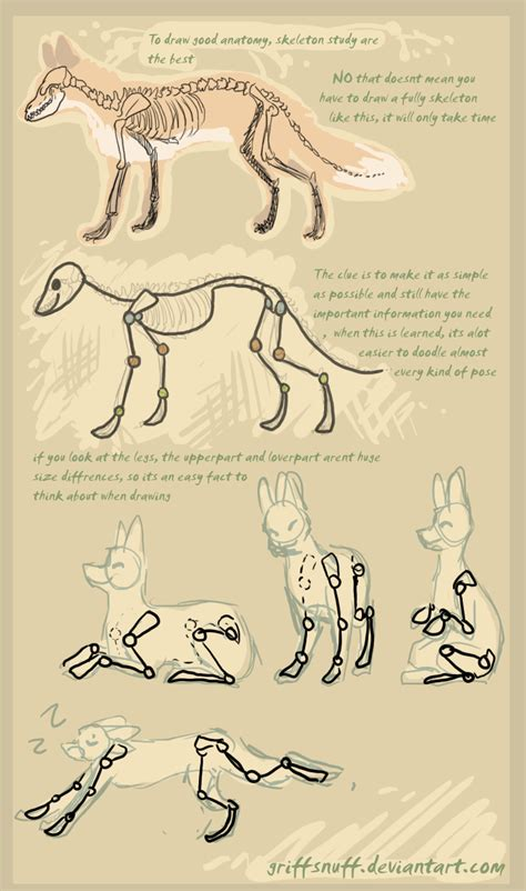doodle draw tutorial fox doodle tutorial by griffsnuff on deviantart