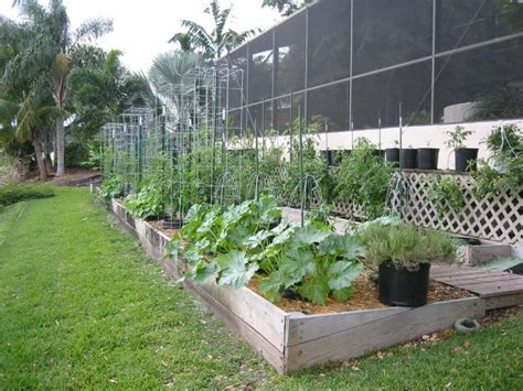 Vegetable Garden Home Pinterest Cool Vegetable Gardens