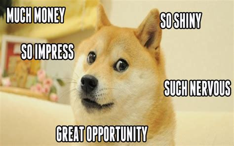 Such Dog Meme - doge meme