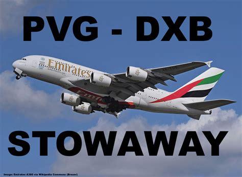 emirates stowaway from shanghai to dubai returned to
