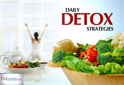 The Most Effective Detox And Cleansing Strategies by 10 Daily Detoxification Strategies Drjockers