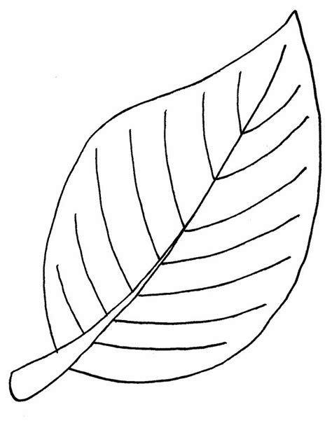 coloring page template printing free printable leaf coloring pages for kids clipart best
