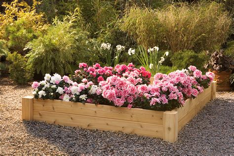 Garden Flower Beds Professional Guide To Building Raised Garden Beds Articlecube
