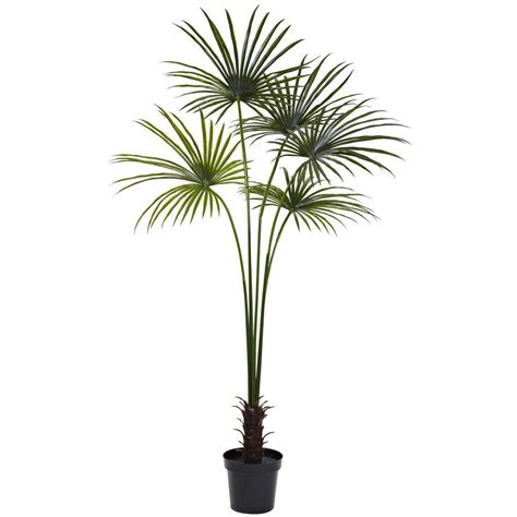 planting fan palm trees nearly natural 7 ft uv resistant indoor outdoor fan palm