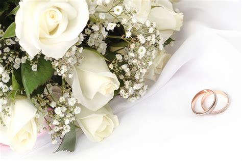 Best Wedding Ideas Websites by The Best Website For Wedding Ideas Kevindailystory