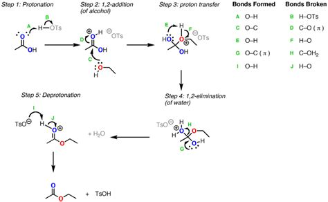 Protonated Carbonyl by Organic Chemistry Protonation Of Carbonyl Oxygen In