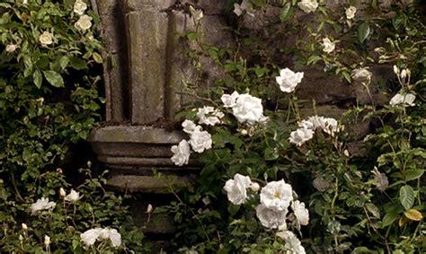 The Secret Garden Flowers The Secret Garden On