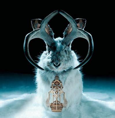 animal miike snow miike snow billcsmusic blog