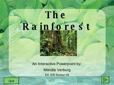 Rainforest Powerpoint Rainforest Interactive Powerpoint