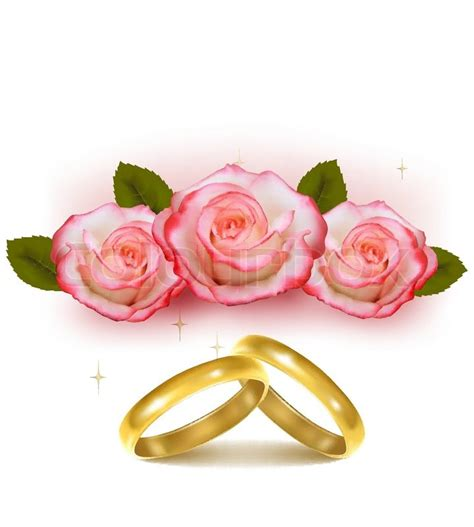 gold wedding rings  front   pink roses vector