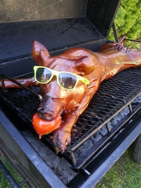 backyard pig roast the 25 best pig roast party ideas on pinterest