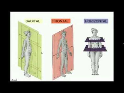 anatoma para posturas de anatomia espacial quot posici 243 n anat 243 mica planos y ejes quot youtube