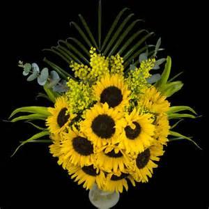 sunflower delivery sunflower delivery send sunflowers buy sunflowers post sunflowers
