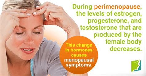 are you in perimenopause here the 25 best ideas about where is testosterone produced on