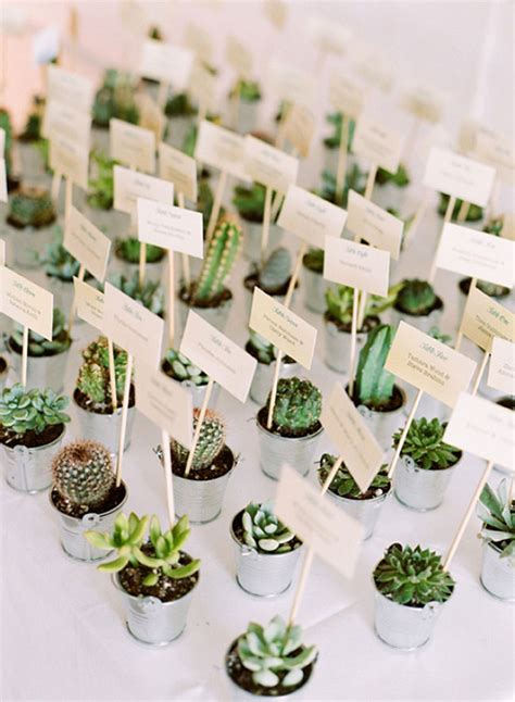 Wedding Gift Plant by 6 Diy Thank You Gifts That Won T The Bank Wedding