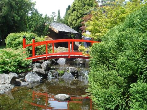 The Japanese Garden In Hobart S Royal Botanical Gardens Royal Botanic Gardens Hobart