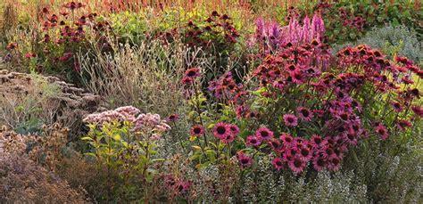Oma S Garten Pflanzen by Pflanzen Und Insekten Im Garten Helfen Chrismon