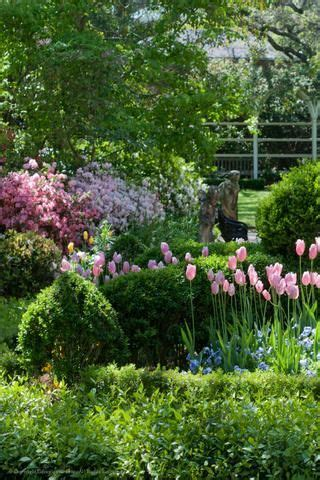 49 Best Images About Gorgeous Southern Gardens On Southern Flower Gardens